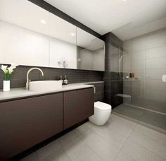 Bathroom mirrored joinery over toilet