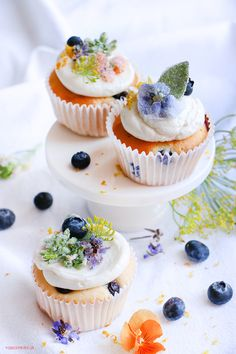 ... vanilla cupcakes with naranja and blueberry ...