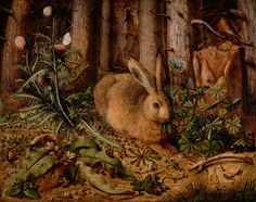 Hans Hoffmann, A Hare in the Forest, c 1585 (Getty Museum)