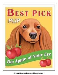 Dachshund Apple of Your Eye Print