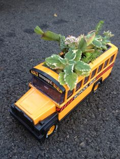 Blooming Succulents Planter Toy BuddyL School Bus by TizaVintage, $28.00....I have one of these but I use a School Bus Cookie Jar as a planter Bus Driver Gifts, School Bus Driver, School Buses, School Bus Crafts, School Gifts, School Days, Bus Driver Appreciation, Staff Appreciation, School Rhymes