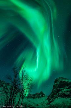 Northern Lights - Kvaløya, Tromsø, Norway