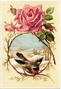 This lovely Victorian card features a pretty pink rose and a circle of branches framing a sweet bird. In the circular shape, behind the bird, is a bright blue sky over a country winter scene. The background of the card is a soft yellow color.