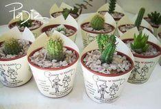 souvenirs with succulent decor Wedding Dj, Wedding Favours, Garden Wedding, Wedding Gifts, Cactus, Flower Pots, Flowers, Love Garden, Herbs Indoors
