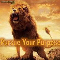Pursue your purpose ... bv PartnerWithBV.com #HappyDisturbance