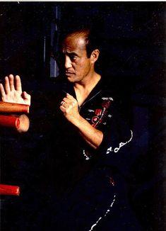 The Path To Wing Chun Samuel Kwok Pdf Download