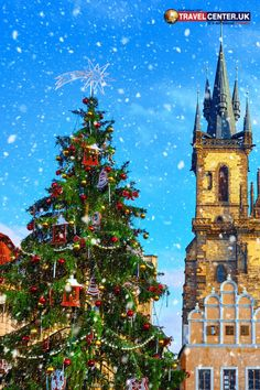 A Christmas tree at the central square old town Prague Christmas, Best Christmas Markets, Christmas Tree, Cheap Holiday, Holiday Deals, Winter Holiday Destinations, Travel Center, Central Square, Winter Holidays