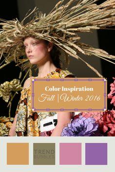 Herfst Winterkleuren 2015-2106