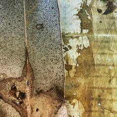 Leaf meets art II ... . . . . . #leafart #abstractart #mixedmedia #contemporaryabstract #abstractexpressionism #abstract #abstractphotography Abstract Expressionism, Abstract Art, Dutch Artists, Leaf Art, Abstract Photography, Mixed Media, Van, Contemporary, Vans