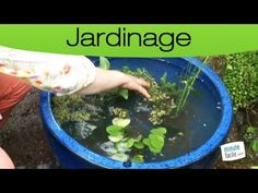 Promesse de Fleurs - YouTube Garden Art, Planters, Configuration, Diy, Mineral, Aquarium, Gardening, Garden, Ponds