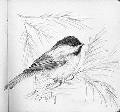 Bird Drawings, Ink Pen Drawings, Animal Drawings, Cute Drawings, Drawing Sketches, Sketching, Watercolor Sketch, Watercolor Paintings, Tatoo Bird