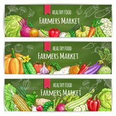 Vegetables healthy food banners. Farmers market sketch vegetables harvest. Vegetarian sketched veggies cabbage, onion, radish and