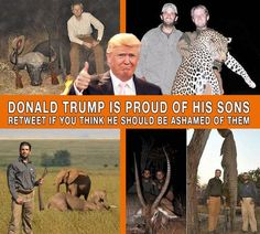"Disgusting, heartless group of spoiled brats.  Hunting Gods' beautiful creatures for your""photo-op"" egos shows how small of men they are!  Real men have hearts for all living beings"