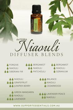 Niaouli Essential Oil, Oregano Essential Oil, Essential Oil Uses, Geranium Essential Oil, Doterra Diffuser, Essential Oil Diffuser Blends, Doterra Essential Oils, Doterra Blends, Geranium Diffuser Blend