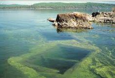 mark lake thunder bay - Google Search