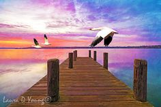Bird Art Print Snow Geese Flying Wooden Dock on by FineArtography
