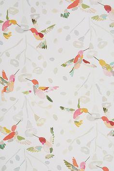 Plumed Crest Wallpaper