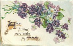 ALL THINGS WERE MADE BY HIM  violets