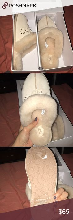 New in box Ugg slippers I adore these so much but unfortunately they are just sitting in my closet not being put to use. Size 10 but fits like a 9.5 never worn. UGG Shoes Slippers