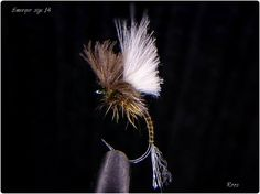 Emerger size 14 By Thomas Roos