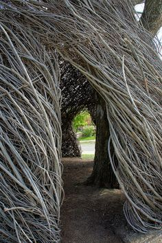 Patrick Dougherty Stickwork