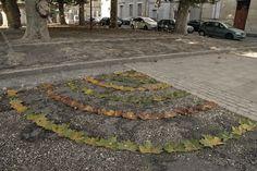 MARC POUYET/ Tierwelt – Street-Art, mal ganz natürlich