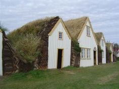 Green roof turf houses are big in Iceland - they help insulate the houses from the wind and cold.