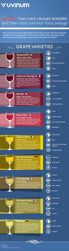 Wine and Pairing by Uvinum #infographic #infografía