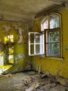 peeling chartreuse walls in sunlight