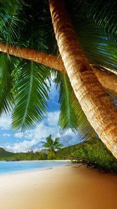 Tropical Beaches In California Landscape Photography, Nature Photography, Beach Wallpaper, Wallpaper Wallpapers, Romantic Beach, Photos Voyages, Tropical Beaches, Island Beach, Beach Scenes