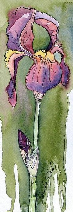 "Watercolor: ""Purple Iris""   Artist/copyright: Brenda Jiral"
