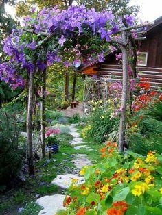 garden arch trellis wood purple path