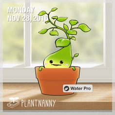 Say hello to my plant! It has absorbed 308 oz of water. Get yourself a plant at http://fourdesire.com/outer_link?url=http://itunes.apple.com/app/id590216134&l=en_US&m=583C6BBF