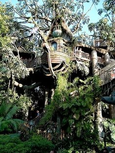 Swiss Family Treehouse @ Adventureland, Disneyland it isn't swiss family anymore now.renamed to Tarzans tree house. I loved this place Cool Tree Houses, Beautiful Tree Houses, Tree House Designs, Unusual Homes, Tree Tops, In The Tree, Play Houses, Disneyland, Beautiful Places
