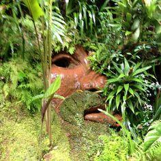 Bichacue Yath - Arte y Naturaleza. - Leonera Cabecera
