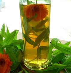 """When steeping herbs in vinegar in the morning, it can be used that evening since it will begin flavoring the vinegar immediately. The longer it stands the more flavor it will have. The flowers and herbs will deteriorate and the flavor will not be as vibrant. The annual bed of pot marigolds is filled with plants. These are the true pot marigolds, Shakespeare's """"flowers of Middle Summer"""", and by midsummer this spot will appear to be covered with a cloth of gold. I expect them to self-sow,..."""
