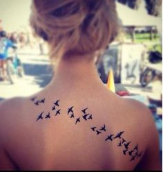 Birds birds birds!