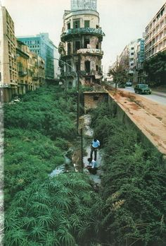 National Geographic, February 1983, Beirut, up from the rubble, photo: Steve McCurry - The Green Line was a line of demarcation in Beirut, Lebanon during the Lebanese Civil War, it separated the East from the West; the appellation refers to the coloration of the foliage that grew because the space was uninhabited.  Now, many of the buildings have been rebuilt.