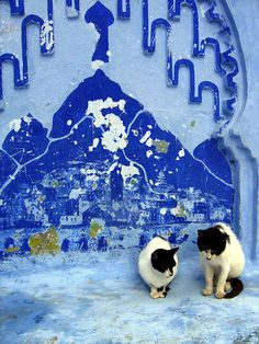Chefchaouen by guessica, via Flickr