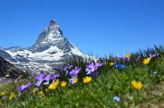 The Matterhorn in the Swiss Alps