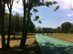 Roma sperimenta il Progetto Parchi: i Municipi protagonisti