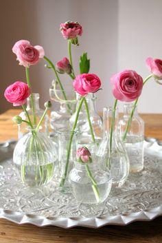 Floral Arrangement ~ pink ranunculus in assorted clear vases, jars Clear Vases, Bud Vases, Flower Vases, Cactus Flower, Simple Flowers, Spring Flowers, Beautiful Flowers, Fresh Flowers, Small Vases With Flowers