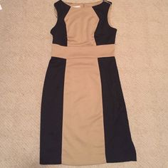 Ultra Classy Dress Cream and brown dress. Appropriate for the office or a night out Dresses Midi