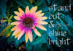 SALE Stand Out & Shine Bright Love Yourself by PatrickRabbatPhotos