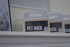 Pet Rock Favors at a Nerd Party #nerdparty #favors