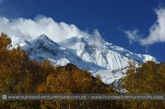 Rakaposhi (7788m) is one of the most beautiful peak and the world's 29th highest mountain. It dominates the horizon and watches over the Karakoram Highway as you travel from Gilgit to Hunza. The peak is surrounded by famous glaciers and valleys like Bagrot, Minapin and Jaglot.