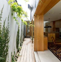 narrow house design interiors - Google Search