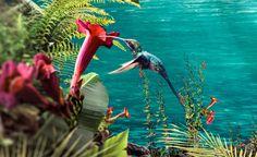 Chiquita Paradise Matte Painting, Paradise, Illustration, Green, Blue, Illustrations, Heaven
