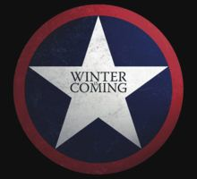 Winter Is Coming by FandomFixation