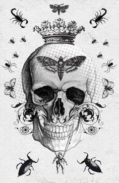 Imagens de caveira Pinterest